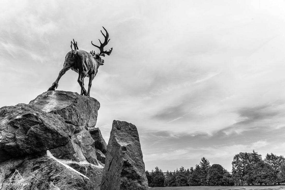 The Beaumont-Hamel Newfoundland Memorial (Caribou Memorial)