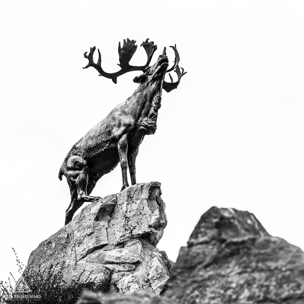 Caribou memorial, Newfoundland Regiment, Beaumont-Hamel